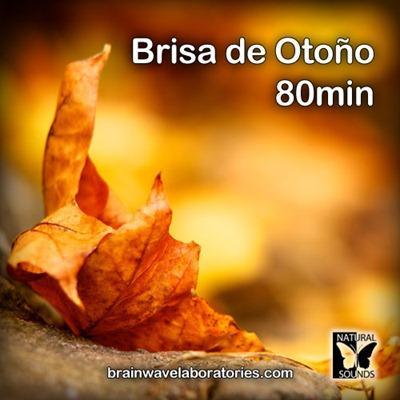 Sonido de brisa de otoño y pájaros