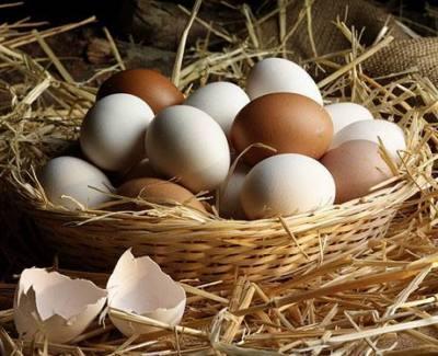 Acertijo. La cesta con huevos