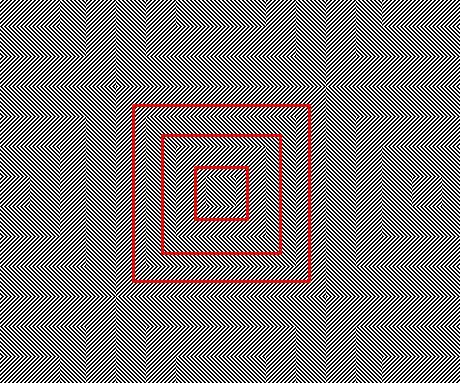 Nueva ilusión visual