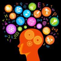Tercer principio rector del cerebro