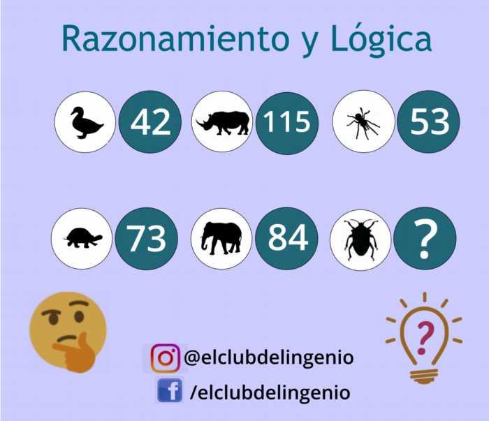 Un grupo de animales y números para jugar y razonar