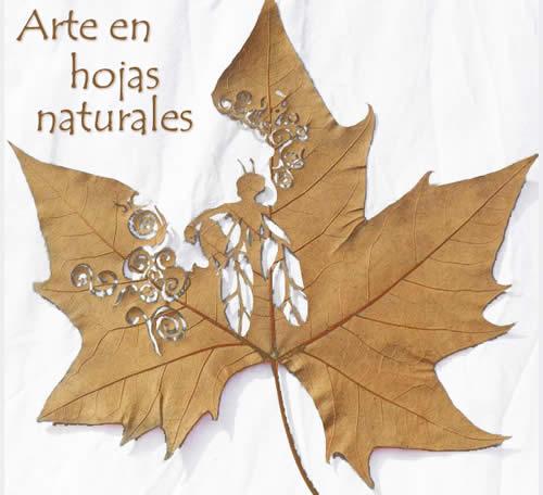 creatividad-con-hojas-naturales
