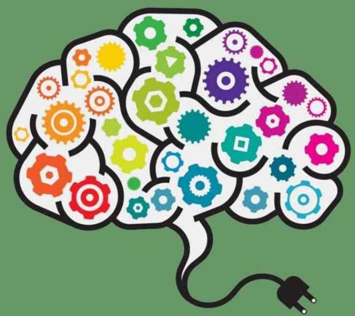 22 de julio - Día Mundial del Cerebro