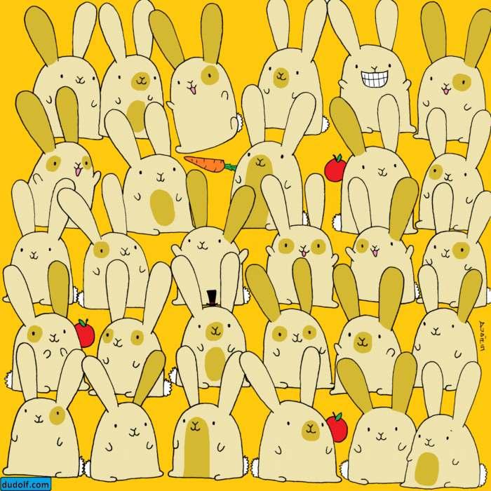 Encuentra al conejo único