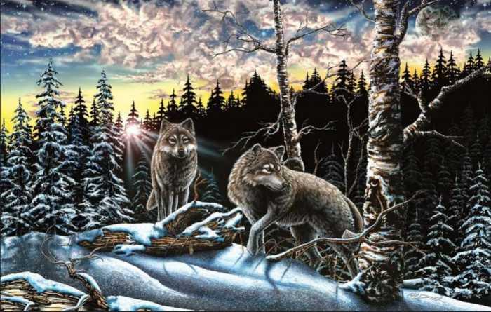 encuentra-15-lobos-escondidos