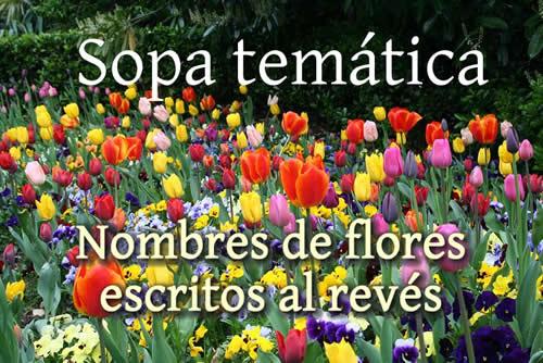 flores-escritas-al-reves