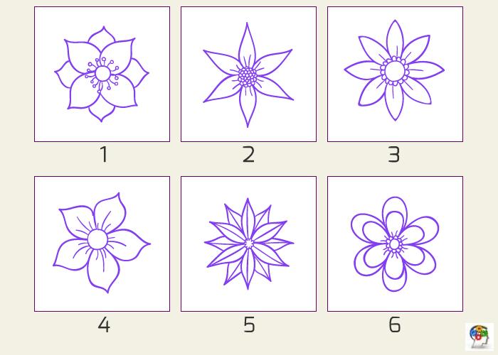 Seis flores y una razón