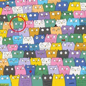 Encuentra al gato escondido entre los buhos