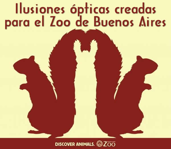 ilusion-optica-zoo-buenos-aires