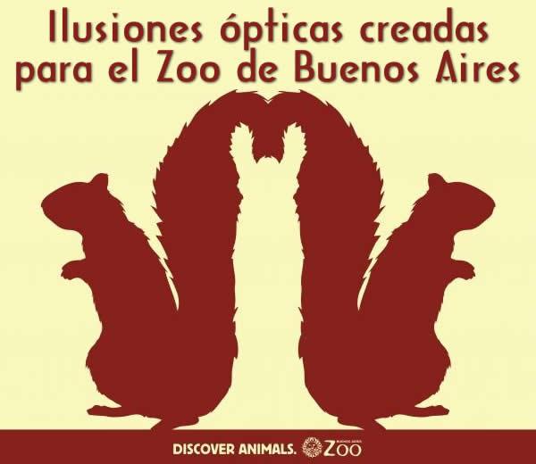 ilusion-optica-zoo-buenos-aires