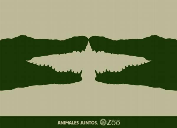 ilusion-visual-cocodrilos