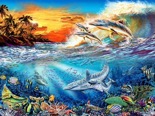 ilusion-visual-los-delfines