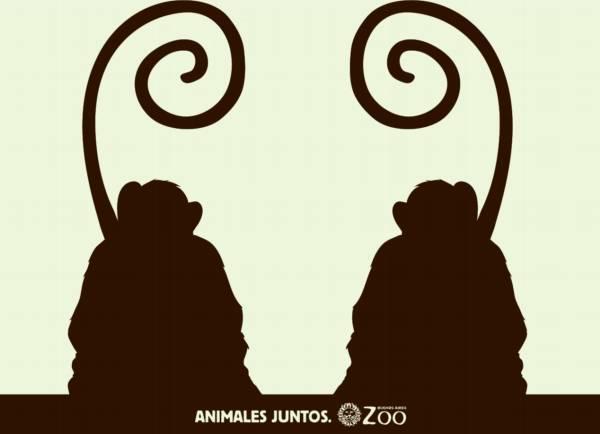 ilusiones-opticas-monos
