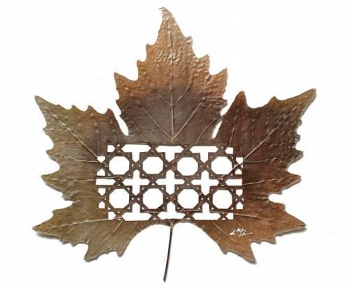 ingenio-y-creatividad-con-hojas-naturales