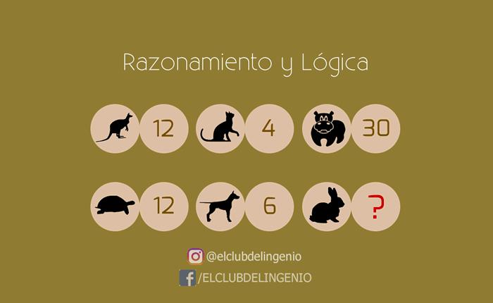 Razona y encuentra la relación entre los números y los animales