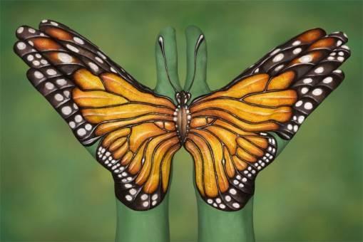 mariposa-pintada-en-las-manos