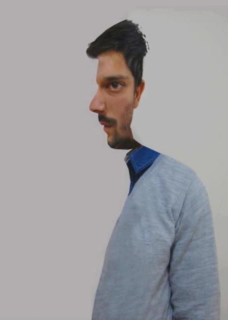 mitad-perfil-mitad-frente-ilusion-optica