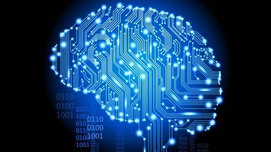 modelar-el-cerebro