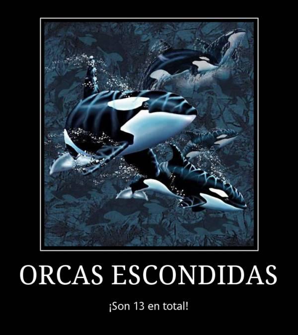 Ilusión visual. Orcas escondidas