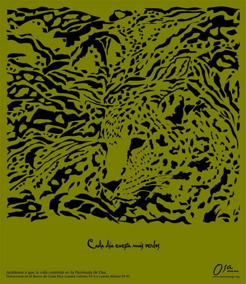 osa-animales-en-via-de-extincion