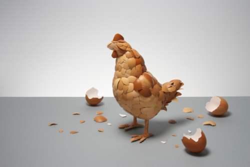 pollo-con-cascaras-de-huevo