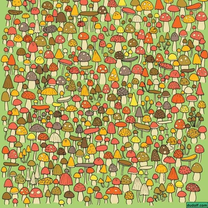 Desarrolla la percepción visual con hongos, un gato y un asterisco