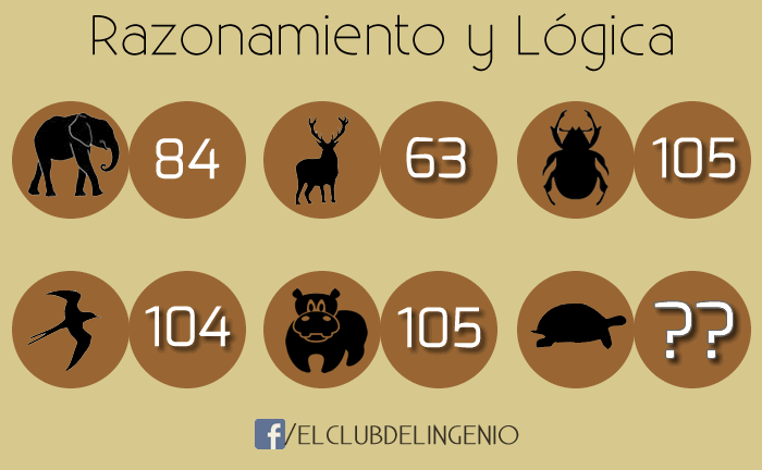 Animales y números para razonar