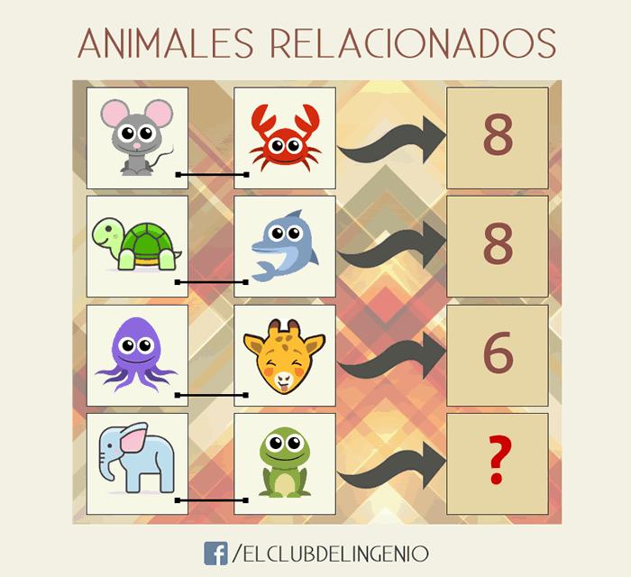Ocho animales relacionados con cuatro números