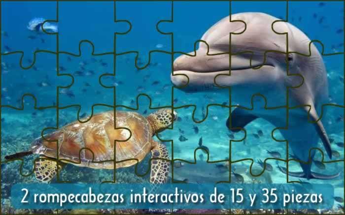 2 rompecabezas interactivos de 15 y 35 piezas: encuentro en el mar