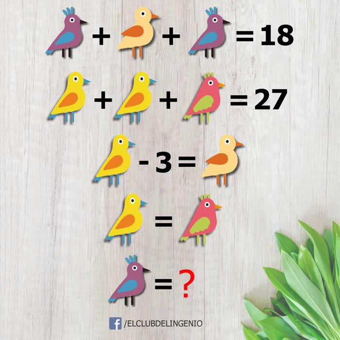 Un acertijo lógico matemático con pájaros