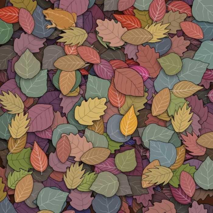 Un montón de hojas y una sorpresa