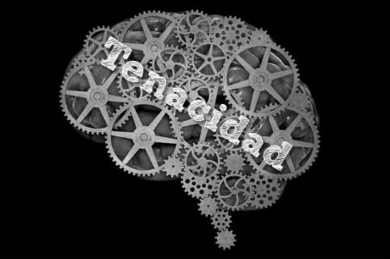 septimo-principio-rector-del-cerebro