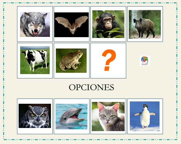 Secuencia lógica de animales. Un juego para entrenar tus neuronas