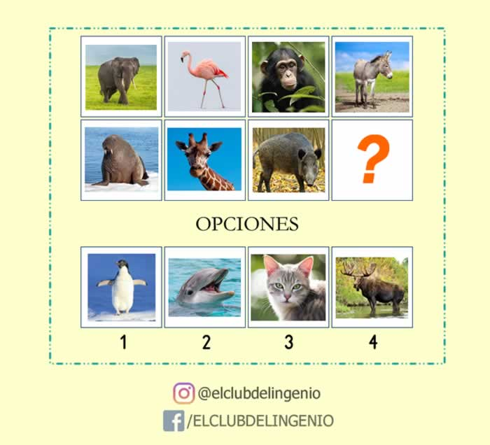 Completa la secuencia lógica de animales