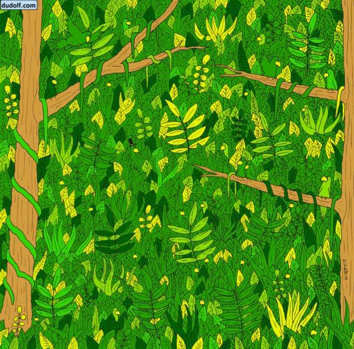 Una serpiente escondida en la jungla