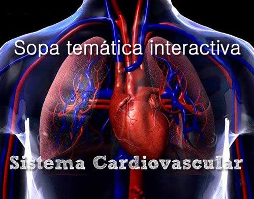 Crucigrama tipo sopa de letras sobre el aparato cardiovascular