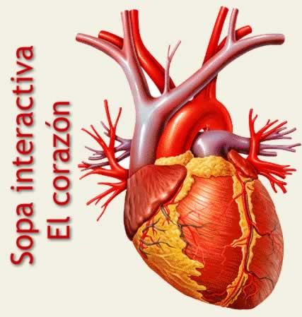 Sopa temática sobre términos del corazón