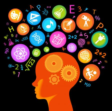 tercer-principio-rector-del-cerebro